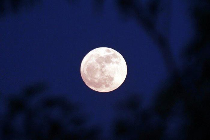 super luna121